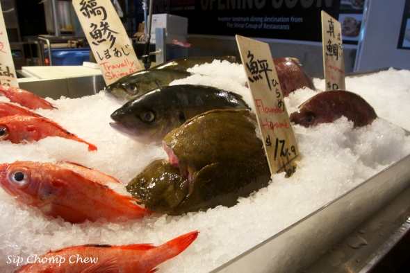 SCC Fish