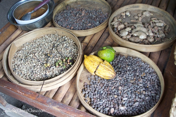 SCC Coffee Beans Bali 2014