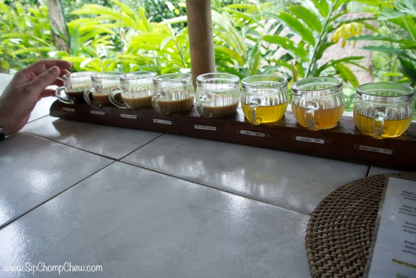SCC Tea and Coffee Sampler 2 Bali 2014